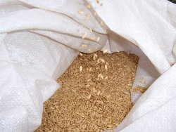 Sack of wheat