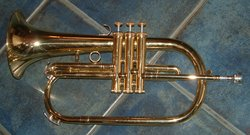 Flugelhorn- this is a standard 3-valved Bb model.